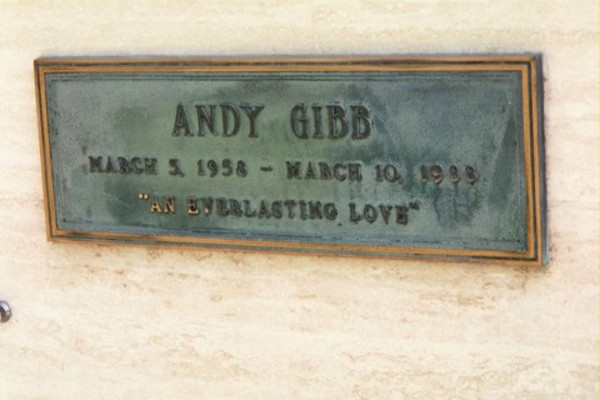 Andy Gibb # 2
